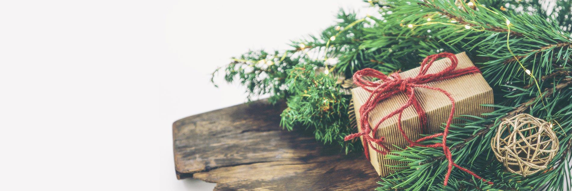 Günstige Gartenhäuser als Weihnachtsgeschenk